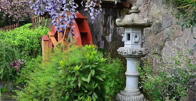 japanische pflanzen so bringen sie asiatischen flair in den garten. Black Bedroom Furniture Sets. Home Design Ideas