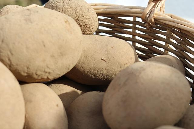 Kartoffeln richtig lagern im Korb