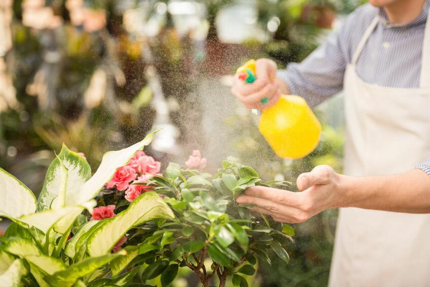 Bild Pflanzenschutzmittel